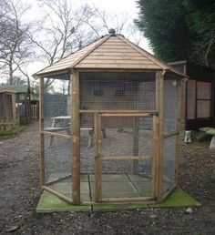 used outdoor parrot aviary