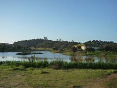 A lake in arid Portugal created by Sepp Holzer at Tamera. Amazing Sepp!!!