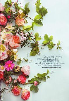 :: convites floridos ::