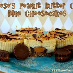 Reese's Peanut Butter Cup Mini Cheesecakes {Recipe} Recipe - ZipList