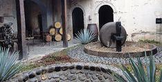 7 cosas que hacer en Tequila, Jalisco   México Desconocido