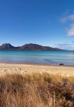 Crystal clear Great Oyster Bay and the Hazard Mountains in #Tazmania. #travel #jetsettering #Australia