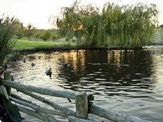 Almada, Parque da Paz