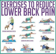 Exercises to reduce Lower Back Pain - Healthy Fitness Plank Abs - FITNESS HASHTAG