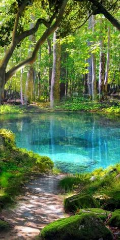 Fantasy Art Landscapes, Fantasy Landscape, Beautiful Landscapes, Landscape Paintings, Landscape Art, Green Pond, Blue Green, Landscape Photography, Nature Photography