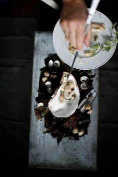 Austern Muscheln Sylt Fisch