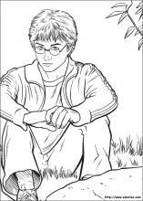 212 Beste Afbeeldingen Van Harry Potter Coloring Pages Coloring