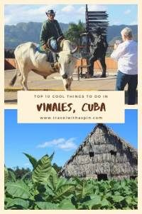 Top 10 things to do in Viñales, Cuba - Travel With A Spin Cuba Itinerary, Stuff To Do, Things To Do, Visit Cuba, Travel Must Haves, World Travel Guide, Vinales, Cuba Travel, Adventure Activities