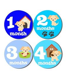 Milestone Baby Month Stickers- 12 month stickers- Monthly Stickers- Milestone Sticker- Baby Month St
