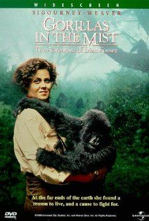 Gorillas in the Mist.  Great movie to show the complex social structure and  nature of gorillas.  Jennifer Guckenberger