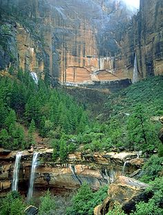 Done - Emerald Pools, Zion National Park. hiked the Lower and Upper Pool trail. Us National Parks, Zion National Park, Zion Park, Zion Utah, Oh The Places You'll Go, Places To Travel, Places To Visit, Rv Travel, Utah Vacation