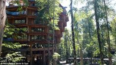 The Nothofagus Hotel & Spa in Chile offers guests panoramic views of the Patagonian Andes...