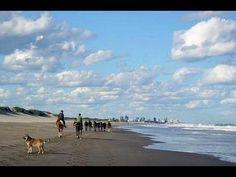 Lucila del Mar es una localidad balnearia y turística argentina, en el partido de La Costa, provincia de Buenos Aires, al norte de San Bernardo del Tuyú y a ...
