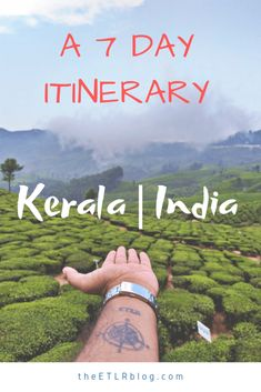 The Perfect 7 Day #kerala  #roadtrip  #itinerary  to experience God's Own Country #India
