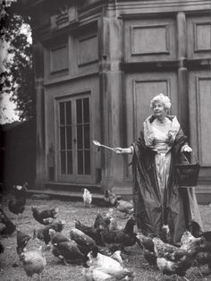 vintage photo of the Duchess of Devonshire with her chickens.