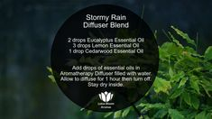 10 Simple Essential Oil Blends for Your Diffuser - Emilia Fleming Essential Oils For Add, Essential Oil Diffuser Blends, Lemon Essential Oils, Aromatherapy Diffuser, Aromatherapy Recipes, Congestion Diffuser Blend, Eucalyptus Essential Oil Uses, Sleep Aromatherapy, Aromatherapy Products