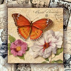 Vintage - butterfly