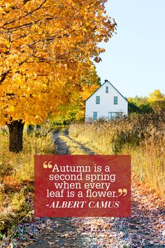 "Quotes about fall: ""Autumn is a second spring when every leaf is a flower."""