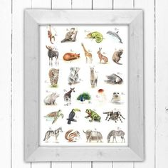 Dieses tolle ABC-Poster mit vielen handgemalten Tieren, eins für jeden Buchstaben des Alphabets, ist ein Schmuckstück in jedem Raum und eine wunderschöne Geschenkidee für jeden Anlass. Besonders für Schulkinder oder als Geschenk zur Einschulung als schöne Deko mit Lerneffekt.  Im Original wurde das Bild mit Aquarellfarben auf Aquarellpapier gemalt, folgend digitalisiert und als Poster Fineartpapier mit schöner Aquarellstruktur gedruckt. Das Papier wurde umweltfreundlich (FSC und PEFC)…