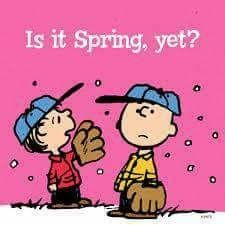 Is It Spring Yet? Charlie Brown and Linus wait for spring training and baseball season. I know the feeling! Charlie Brown Quotes, Charlie Brown Und Snoopy, Peanuts Quotes, Snoopy Quotes, Peanuts Cartoon, Peanuts Snoopy, Baseball Memes, Softball Memes, Baseball Gear