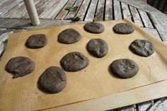 Fossils made with dirt dough and dry overnight. - No Baking !!