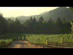 J. Davies Vineyards Video - Diamond Mountain District Cabernet Sauvignon