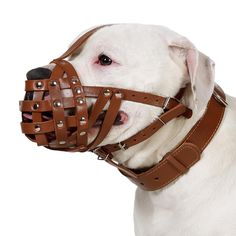 Dog Muzzle Boxer American Bulldog Leather Basket Medium Large Black Brown ** Trust me, this is great! Click the image. : Dog muzzle
