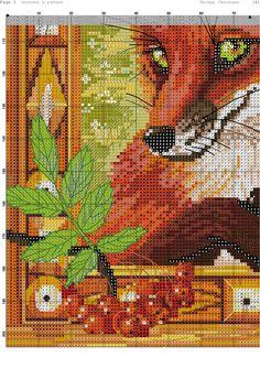 Red Fox 7-8