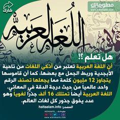 اللغة العربية Pals Llr Arabic Calligraphy