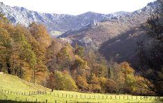 Ruta Los Molinos. Rutas en Asturias