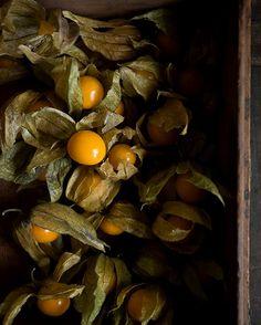 Gorgeous Food Photography: Adriana Mullen Gooseberries