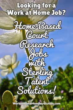 Sterling Talent Solutions is hiring work at home court researchers in the US! These are full-time work from home positions. High school diploma or equivalent. If you're seeking home-based work, this might be the perfect job for you! You can make money from home!