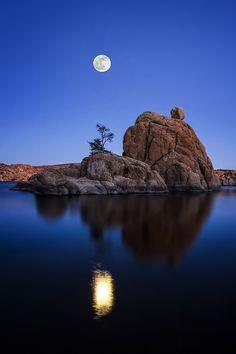 Bonsai on the Lake Rocks, Watson Lake, Arizona