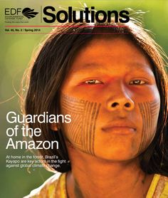 Indigenous tribes band together with environmentalists to save the Amazon forest