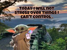 Inspirational Quotes With Images, Wise Quotes, Funny Quotes, Funny Memes, Hilarious, Yoda Meme, Yoda Funny, I Know You Know, Sweet Child O' Mine