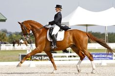 Mette Rosencrantz and Finally, winners of the Grand Prix Special at the Feb. 28-Mar. 3 International Horse Sport Palm Beach Dressage Derby at Equestrian Estates    http://phelpsmediagroup.com/viewarticle.php?id=7581
