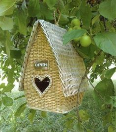 All Birds, Love Birds, Beautiful Birds, Simply Beautiful, Beautiful Women, Honeysuckle Cottage, Nester, Bird Boxes, Mellow Yellow