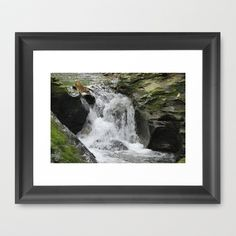 Waterfall by Sarah Shanely Photography $31.00