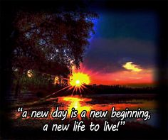 Today is a day when something new will start.  Maybe, God wants to show us something new today.  We can decide to change an attitude or try something different.  Like the apostles who left everything to follow Jesus. Life Quote. Faith Quote, Psychology Quote.