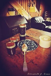make blueberry jam.  from the blueberries by the lake.
