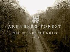 Arenberg Forest by Tony DeBoom Urban Cycling, Pro Cycling, Cycling Bikes, London Marathon, Road Bike, Paris, Star Wars, Country Roads, Racing
