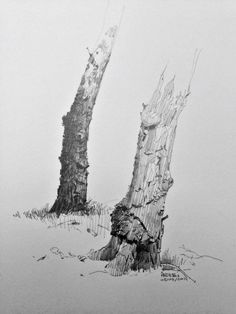 two trees, Andrei Riabovitchev on ArtStation at http://www.artstation.com/artwork/two-trees