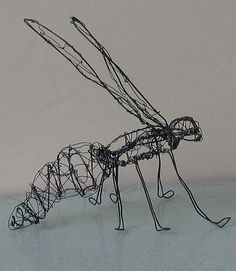 Wire Insect by perpetualplum, via Flickr