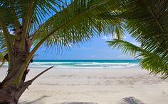 I want here!!!