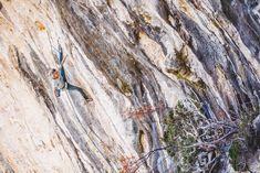 Klettergurt Black Diamond Test : Black diamond chaos klettergurt produkttest climbing plus