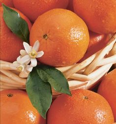 Tangerine Oil, Some Uses