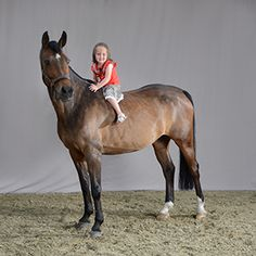 horse, paard, foto, photography, studio, paardensport,kids , communie, portretfotografie