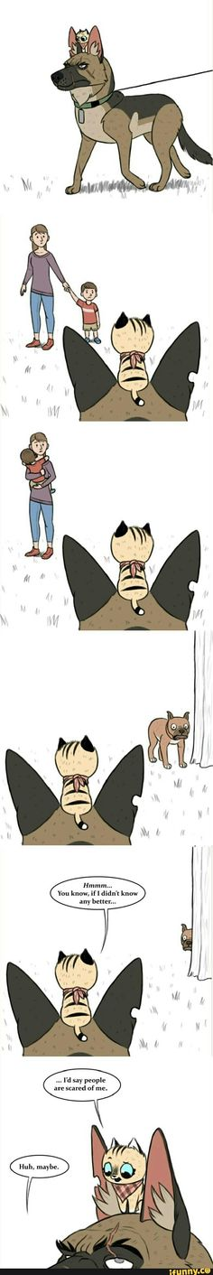 New Adorable Comics About A Labrador Dog And An Alien Cat (Lola and Mr. Funny Animal Comics, Animal Jokes, Funny Animal Memes, Cute Funny Animals, Funny Comics, Cat Memes, Funny Cute, Wolf Comics, Cat Comics