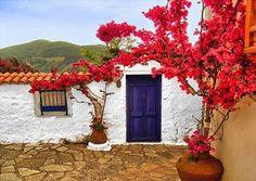 Bougainvillea and blue door in Skopelos island, Sporades, west Aegean sea, Greece Cool Doors, The Doors, Unique Doors, Entrance Doors, Doorway, Windows And Doors, Door Entryway, Entrance Ideas, Deco Nature