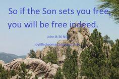 A Joy Filled Woman  : Verse of the Week -John 8:36 - July 4, 2016